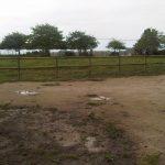 Paddock-Fencing-3