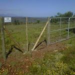 Field Fencing and Gate